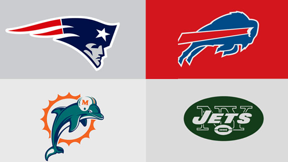 NFL 2013 Season Prediction | NFL Mad